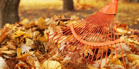 5 Ways to Prepare Your Roof This Fall, Forest Park, Ohio