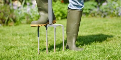 What Is Lawn Aeration? Why Do You Need It?, Elko, Nevada