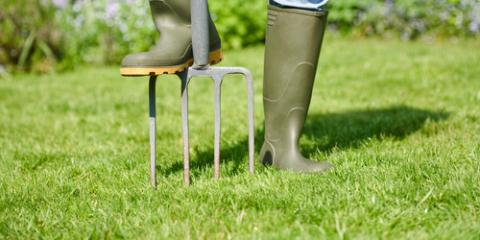 The Importance of Aeration for Winter Lawn Care, Lancaster, South Carolina