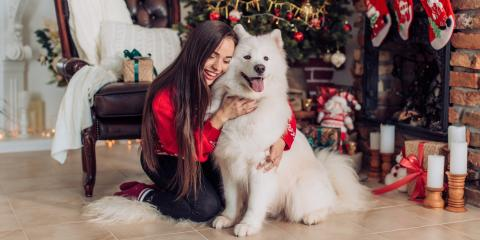 3 Holiday Pet Care Tips, Ewa, Hawaii