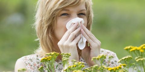 5 Springtime Allergy Tips, East Cocalico, Pennsylvania