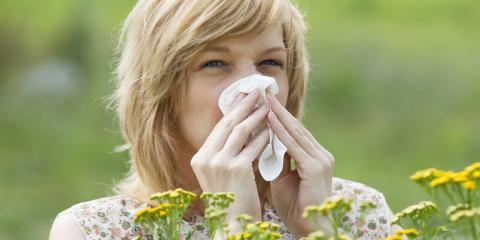 An Introduction to Allergies, Kenai, Alaska