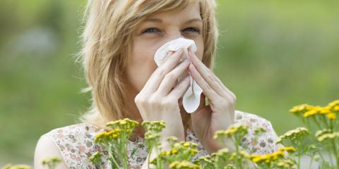 3 Tips for Preparing Your Home for Allergy Season, Rochester, New York