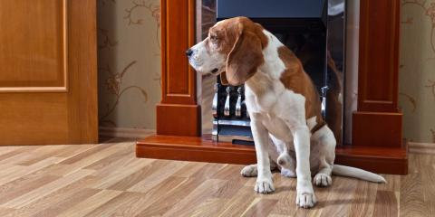 How to Choose the Right Flooring for Your Lifestyle, Savage, Minnesota