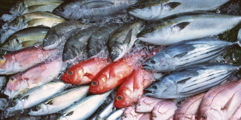 What are the Healthiest Fresh Fish to Eat?, Thomasville, North Carolina
