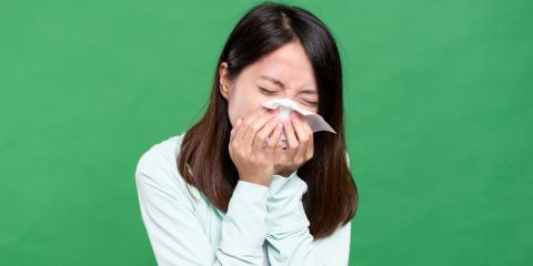 3 Common Causes of Allergies & How to Eliminate Them, High Point, North Carolina