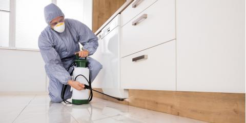 4 Reasons to Hire a Professional Exterminator, North River, Virginia