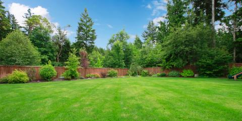 Why Do You Need to Fertilize Your Lawn?, St. Peters, Missouri