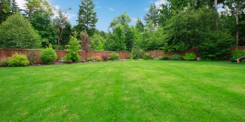 How Often Should You Perform Septic Tank Pumping? - Chris ...