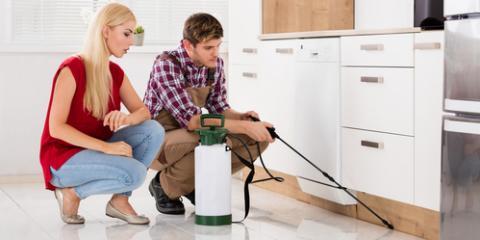 4 Helpful Residential Pest Control Tips, Eagan, Minnesota