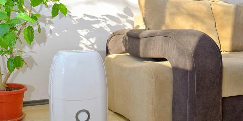 Do You Need to Supplement Your Heating & Cooling With a Humidifier or Dehumidifier?, New Berlin, Wisconsin