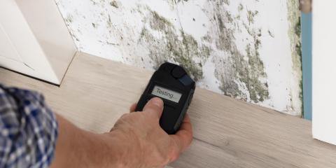 How Does Mold Damage Your Home?, La Crosse, Wisconsin