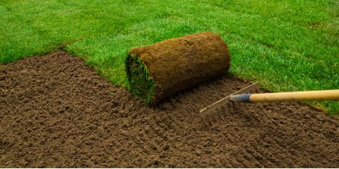 3 Essential Steps for Preparing for a Sod Installation, St. Peters, Missouri