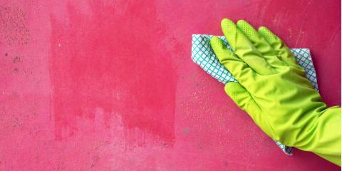 4 Safety Tips for Mold Remediation, Durango, Colorado