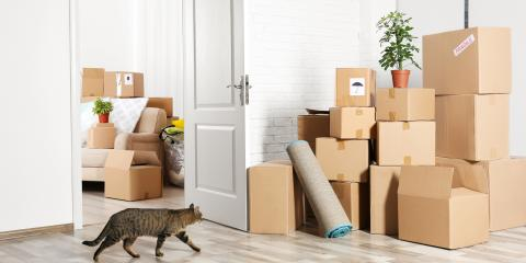3 Useful Tips for Packing Moving Boxes, Kalispell, Montana
