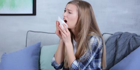 How to Fight Spring Allergens With an HVAC System, Northwest Harborcreek, Pennsylvania