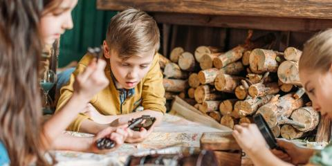 How to Choose Firewood, Imperial, Missouri