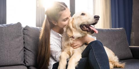 How Does a Dog Affect Home Insurance Rates?, Clayton, Georgia