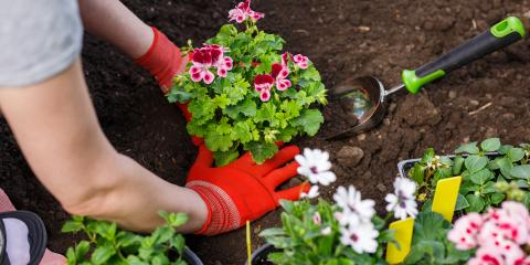 How to Prevent Back Pain While Working in Your Yard, Crossville, Tennessee
