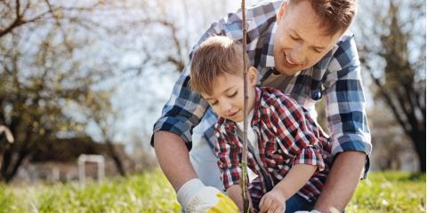 Cincinnati Garden Center Shares 3 Benefits Of Planting Trees , Delhi, Ohio