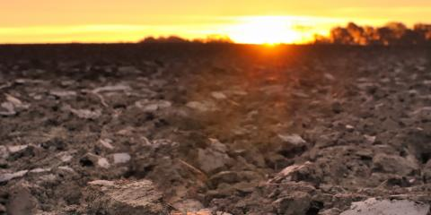 Should You Use Compost, Mulch, or Topsoil for Your Property?, Hilo, Hawaii