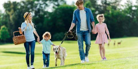 What You Need to Know About Dog Bite Law, Sparta, Wisconsin