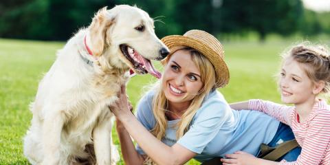 How to Teach Your Child to Behave Around Animals, ,