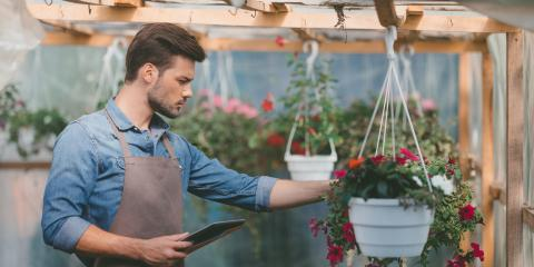 3 Reasons to Buy From a Local Plant Nursery, Hilo, Hawaii