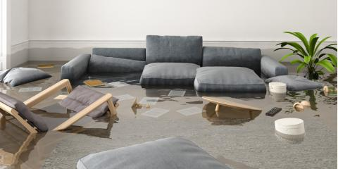 Water Damage Experts on the Health Hazards Caused by Flooding, Lexington-Fayette, Kentucky