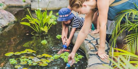 Preparing Your Land for a Pond in 4 Steps , ,