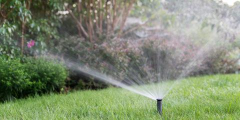 The Do's & Don'ts of Landscaping Around a Septic System, Koolaupoko, Hawaii