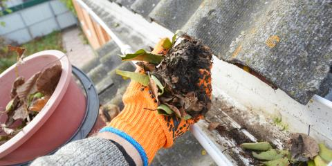 How Often to Clean Your Gutters, Honolulu, Hawaii
