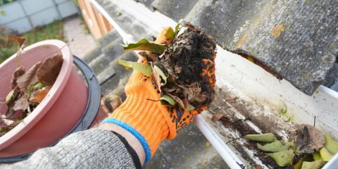 Gutter Cleaning Guide for the Fall Season, Frankfort, Kentucky
