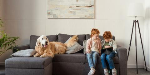 How to Care for an Air Conditioning Unit When You Have Pets, Green, Ohio