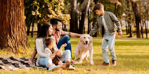 What to Know About Pet Insurance, Hilo, Hawaii