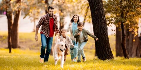 Common Quetions About Stepparent Adoptions in Alabama , New Orleans, Louisiana