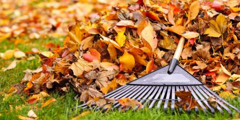 How to Prepare Your Lawn for Fall & Winter, Eldersburg, Maryland