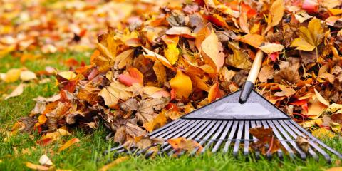 Lawn Maintenance Tips for the Winter, Elko, Nevada