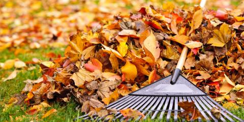 3 Reasons to Shred Leaves, ,