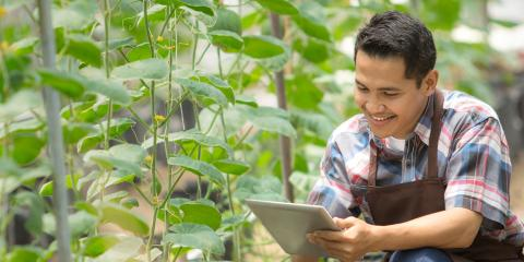 A Guide to Performing & Maintaining a Soil Amendment, Brandon, Florida