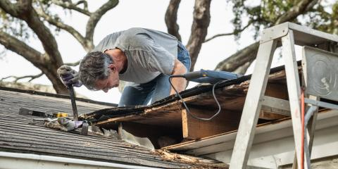 A Useful Guide to Mold Growth on the Roof, Charlotte, North Carolina