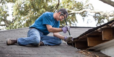How to Tell If Your Roof Has Termites, Northeast Jefferson, Colorado