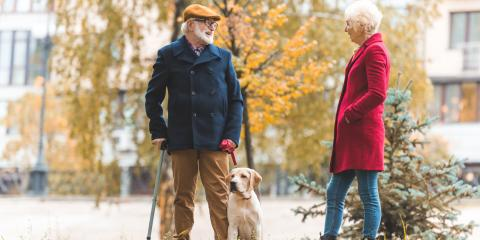 A Brief Guide to Back Pain & Pet Owning, Coon Rapids, Minnesota