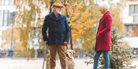 4 Tips to Socialize a Shy Dog, Omaha, Nebraska