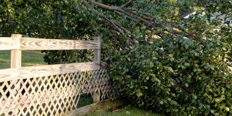 Who's Reponsible for a Fallen Boundary Fence? , Ewa, Hawaii