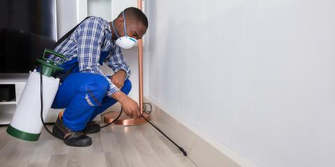 What to Look for in a Pest Control Company, Lake Havasu City, Arizona