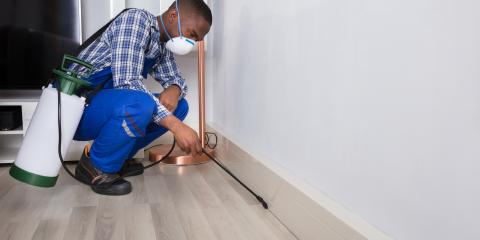 5 Important Pest Control Tips for Businesses, Wahiawa, Hawaii