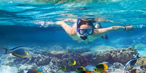 Snorkeling Do's & Don'ts, Lahaina, Hawaii