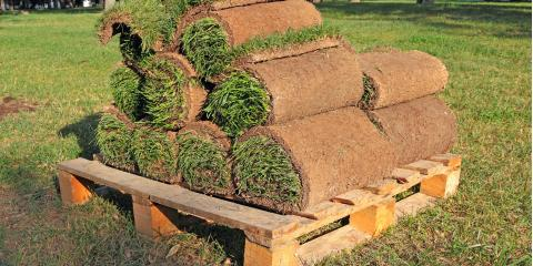 How to Prevent Sod From Overheating, Hill, Arkansas