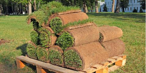 When Should You Schedule Sod Delivery for the Best Results?, St. Peters, Missouri